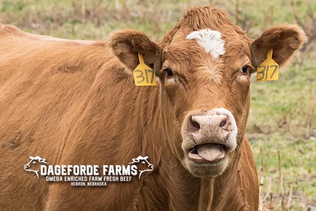 Dageforde Farms flax fed beef 02